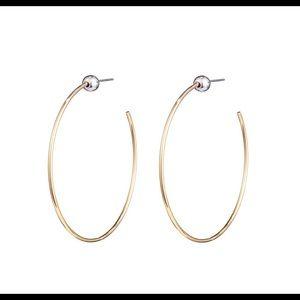 Jenny Bird Small Icon Hoop Earrings In Gold Silver